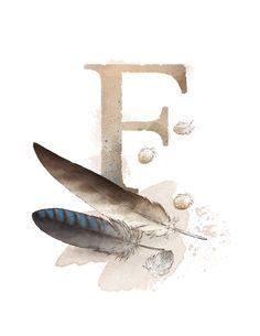 Letter F, Feather, Nature Alphabet Initial Nursery Art 8.5 x 11