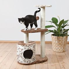 """Trixie Pet Products 37"""" Casta Cat Tree - EXCLUSIVE DEAL! BUY NOW ONLY $40.99"""