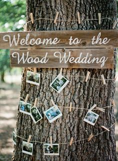 displaying pictures of guests   the couple wrapped around a tree trunk // photo by KrystleAkin.com