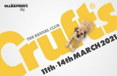 Event: Crufts 2021 - The worlds largest dog show! - Ollie & Penny - ★ Musings of two spoilt Sausage Dogs! ★ Worlds Largest Dog, Sausage Dogs, Local Events, Dog Show, Large Dogs, Activities, Fun, Beer Brats, Big Dogs