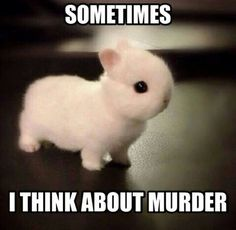 I KNEW MORIARTY WAS A BUNNY.<-pinning for comment