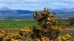 "Countryside near where my book, ""Devil Black"" was set, in Scotland!"