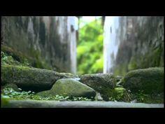 혀끝으로 만나는 중국 4회 - YouTube