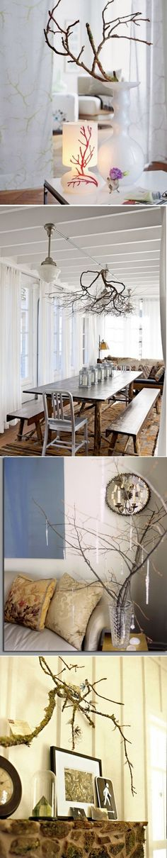 DIY interior with tree branches