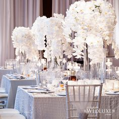 white orchids - Beautiful white wedding decor