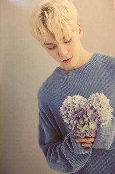 he's so pretty Wonwoo, Jeonghan, Seungkwan, Vernon Seventeen, Seventeen Debut, Hoshi, Hip Hop, Vernon Hansol, Choi Hansol