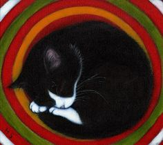 Heidi Shaulis -- I can feel the velvety softness of this cat's fur