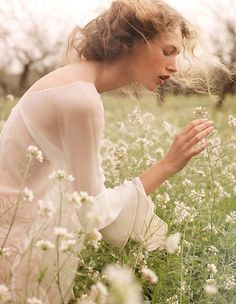 [ soft & delicate in the field ]