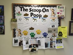 "The Scoop On Poop! How many clients can you honestly say see the value in testing stool samples? This board was designed to help them understand why we want them to be checked! I found printable ""doggy duty"" pictures online, cut them out and laminated them and used them to decorate. I found photos of life cycles of tapeworms, whipworms, hookworms, roundworms, and giardia too. Underneath those are facts about each parasite. The paw prints have reasons why we should deworm and use…"