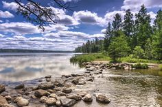 8 If you're heading up north, head to the Mississippi Headwaters at Itasca State Park and don't forget to also hike to the Alton Heights observation tower!