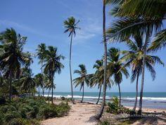 TAIPUS.NET - Imóveis a venda - Península de Maraú - Sul da Bahia