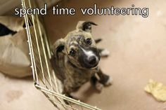 Spend time volunteering in your community.