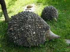 Pebble Hedgehog