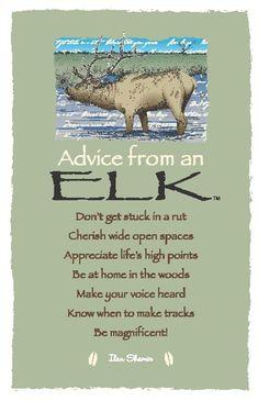 <Spirit Totem Animals: Advice from a Elk. Spirit Animal Totem, Animal Spirit Guides, Animal Totems, Animal Medicine, Pomes, Appreciate Life, Advice Quotes, Advice Cards, True Nature