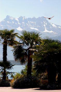 Imagen del banco del lago de Ginebra, en Montreux,