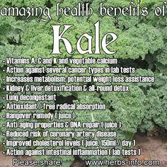 Health Benefits of Kale - If you don't really like the taste of Kale, put it in a fruit smoothie. Apples, mango, strawberries, and raspberries all overpower the taste of Kale. A great way to sneak all of those benefits past your tastbuds! Lemon Benefits, Coconut Health Benefits, Kale Benefits, Vegetable Benefits, Natural Cures, Natural Health, Hangover Remedies, Flu Remedies, Health Remedies