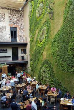 Wanderlust Wednesday: Mexico City