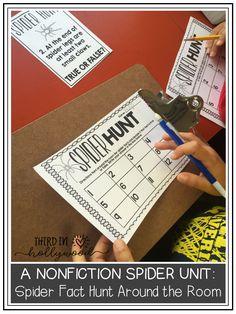 Non-Fiction Spider U
