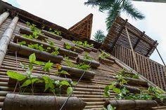 กระถางต้นไม้ แบบแขวน DIY กระบอกไม้ไผ่