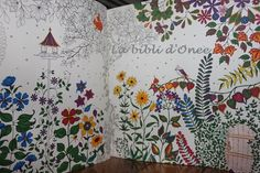 Mon « Jardin secret » (Johanna Basford) : Coloriages pour adultes et chasse au trésor antistress