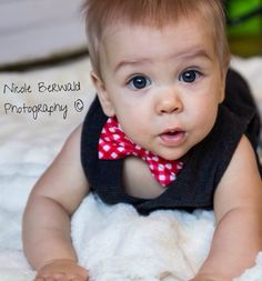 6 month old  Nicole Berwald photography