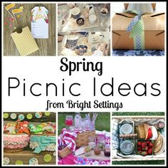 Picnic Ideas -- get ideas for a spring picnic with this great post from Bright Settings.