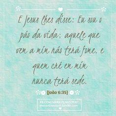 E Jesus lhes disse: Eu sou o pão da vida; aquele que vem a mim não terá fome, e quem crê em mim nunca terá sede. {João 6:35}