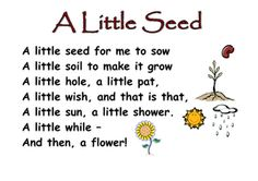 A_little_seed__poem.doc