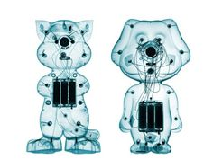 Brendan Fitzpatrick's Photographs Of X-Rayed Toys