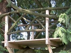 How to Build a Tree House : Archive : Home & Garden Television
