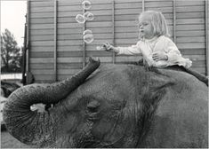 The-girl-and-the-elephant_John Drysdale