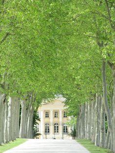 Château Margaux, Margaux, Bordeaux, France