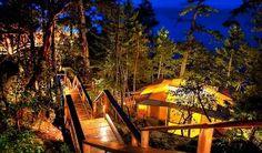 Rockwater Secret Cove Resort, Sunshine Coast, BC. Treehouse suites? Yes, please.