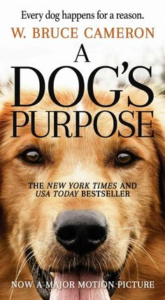 Searching for his purpose over the course of multiple canine lives, Bailey is reborn as a golden-haired puppy after a tragic death as a stray and shares a loving bond with young Ethan before he again dies and starts over, in a story that inspired the film set to be released in January 2017.
