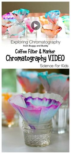 Fun Science Project for Kids: Explore chromatography (the separation of colors) using coffee filters and markers! Great addition to a color mixing unit. You can even turn the results into a colorful butterfly craft! ~ BuggyandBuddy.com
