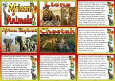Geography Resources - Teaching about Africa. Worksheets, colouring pages and posters for an Africa Topic