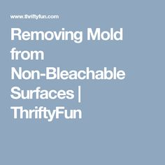 Removing Mold from Non-Bleachable Surfaces | ThriftyFun