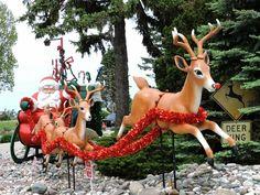 Christmas Trips, Christmas Travel, Holiday Lights, Christmas Lights, Big Island, Lake Tahoe, Ice Skating, The Good Place, Giraffe