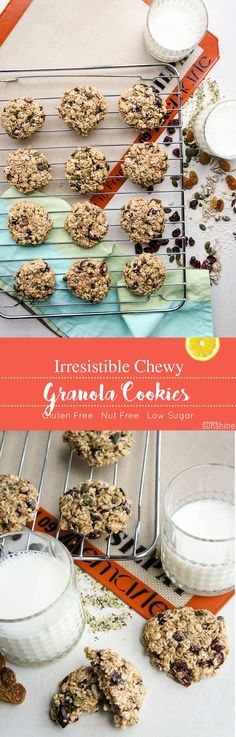Chewy Granola Cookies / These chewy, nutrient dense cookies are absolutely IRRESISTIBLE! Nut free and gluten free, they are the perfect recipe for sharing. #cookies #lowsugar #glutenfree #allergyfriendly #nutfree #granola #chewy