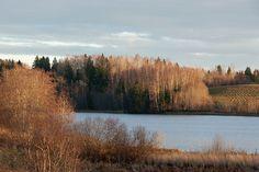 :: Vidrike lake. Otepää upland, Estonia - © Arne Ader / Loodusemees
