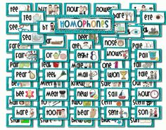 Homophones Word Wall Cards, Grades K-3, ESL, SPED from Stylish Little Schoolhouse on TeachersNotebook.com -  (22 pages)