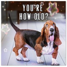 Happy Birthday Card : You're How Old?