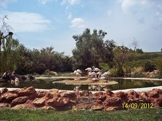 Attika Zoological Park