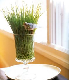 This would be a beautiful centerpiece for a Spring wedding, a New Year's Day brunch, a baby shower, you. Cat Wedding, Floral Wedding, Golf Centerpieces, Cat Grass, Easter Eggs, Floral Arrangements, Brunch, Bird, Tall Grasses