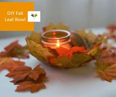 Autumn leaves are falling! These beautiful, delicate Leaf Bowls are as fresh as the fall air. Display on your holiday table with a flickering candle or use to hold wrapped candy. Make a few and give to your favorite teacher or neighbor