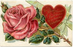 See a marveous collection of 7 Valentine Flowers Images! The Antique Valentine Cards are so romantic. Roses Valentine, Valentine Images, Valentine Day Love, Valentine Crafts, Victorian Valentines, Vintage Valentines, Image Halloween, Image Nature Fleurs, Sweet Messages
