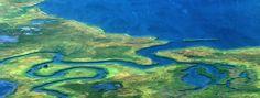 Les marais des Everglades James Grippando situe son histoire dans les Everglades en Floride. Ce matin- là, Abe Beckham, procureur, est appelé dans les marais. Il n'a pas vocation à se rendre…