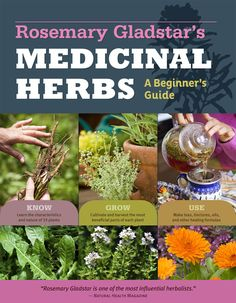 Make your own medicinal syrup from the herbs in your garden using author Rosemary Gladstar's herbal syrup recipe.data-pin-do=