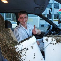 This guy must be insane! Buckets of HONEY or QUEEN BEE PHEROMONE? ...what do you think?