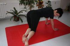 Cvičení Ludmila Mojžíšová - cviky Health Fitness, Kids Rugs, Workout, Exercises, Tv, Kid Friendly Rugs, Work Out, Exercise Routines, Television Set